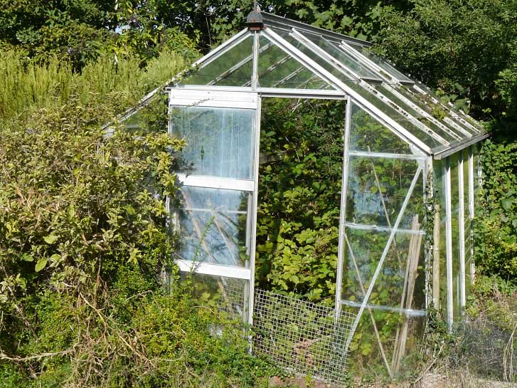 Garden Clearance - Greenhouse